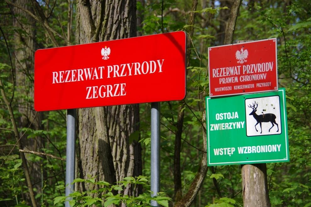 """Rezerwat przyrody """"Zegrze"""""""
