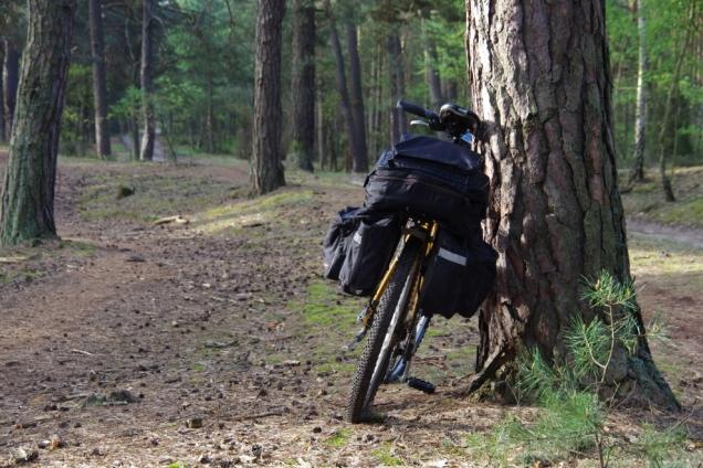 Rower w kampinosie