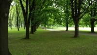 Park Powstańców Warszawy