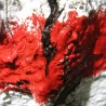 Czerwony szlak