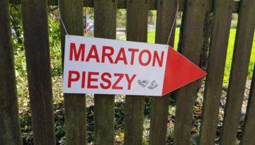 XLVI Maraton Pieszy po Puszczy Kampinoskiej