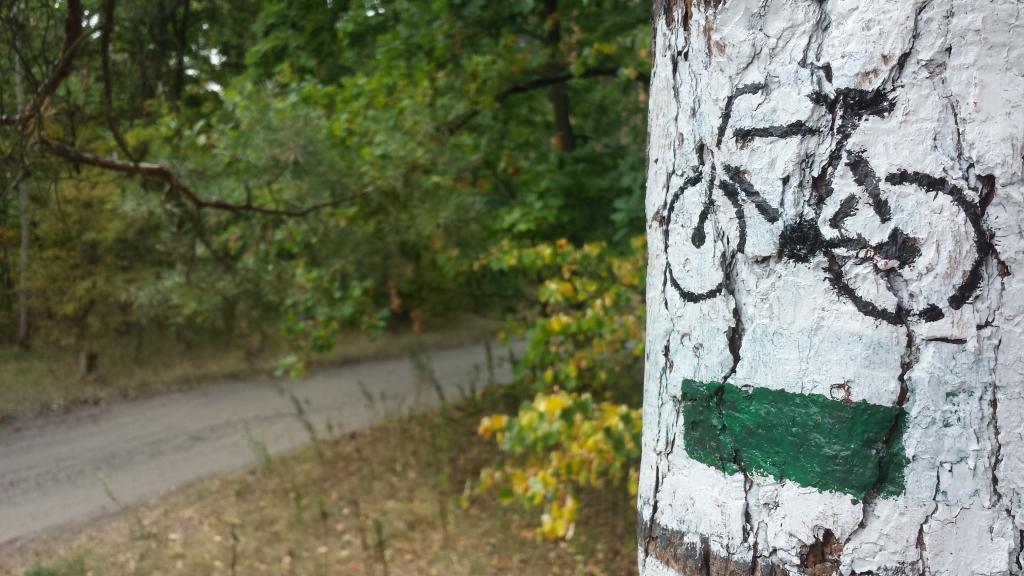 Leśne-trakty
