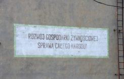 IMGP3769